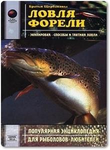 Ловля форели - Братья Щербаковы