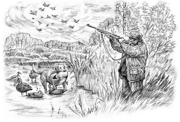 «Методические пособия по охотпользованию» - 17 брошюр