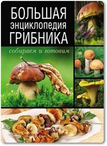 Большая энциклопедия грибника - Поленов А. Б.