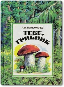 Тебе, грибник - Пономарев А. И.