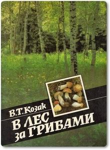 В лес за грибами - Козак В. Т.