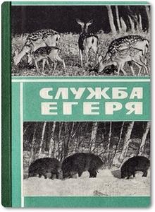 Служба егеря - Коваленко Н. Е.