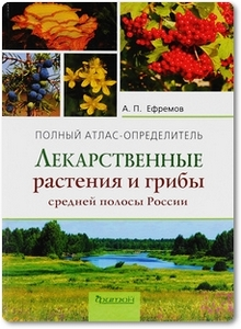 Лекарственные растения и грибы средней полосы России - Ефремов А. П.